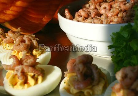 crab on egg