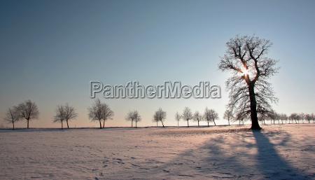 sun goes down in winter