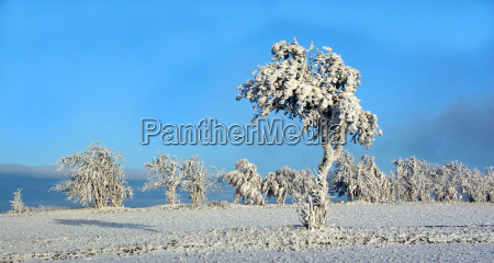 blank european caucasian snow scenery countryside