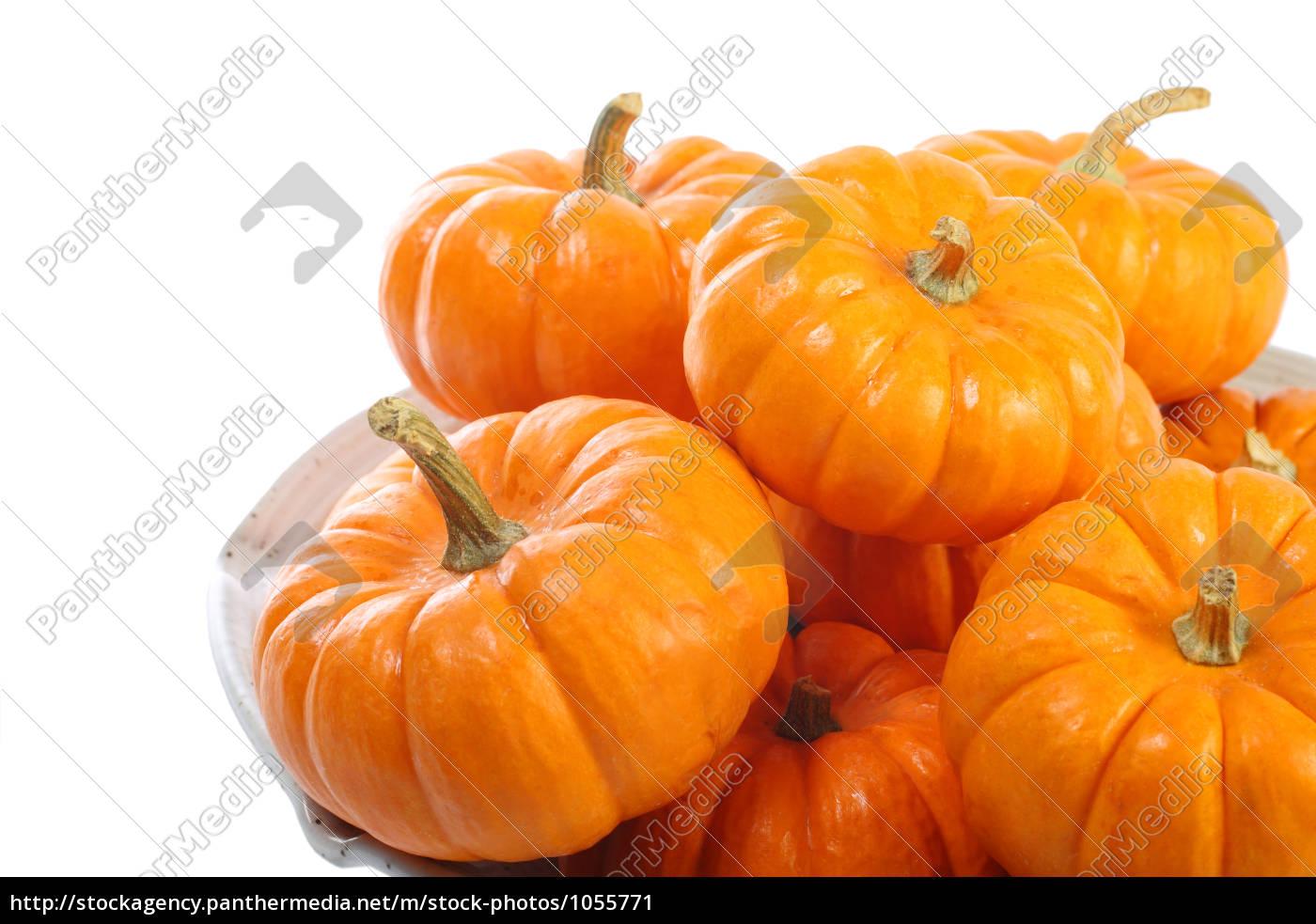 pumpkin, pie - 1055771