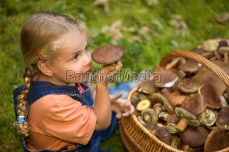 to pick mushrooms