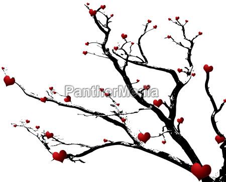 love, tree - 1136055