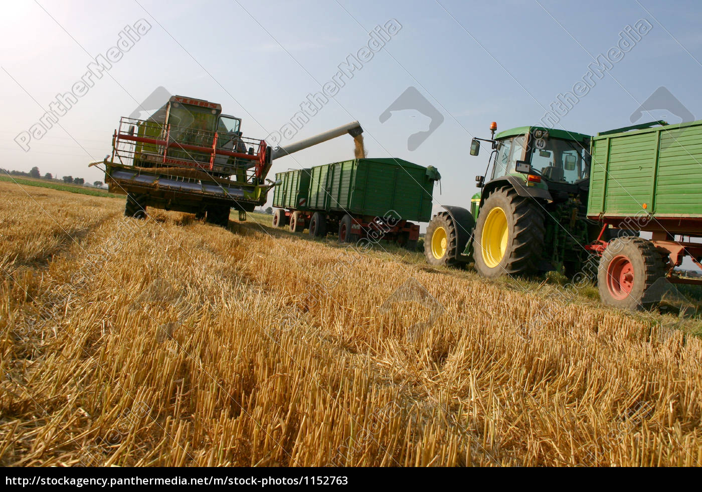 agriculture - 1152763