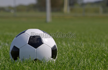 soccer ball in the grass