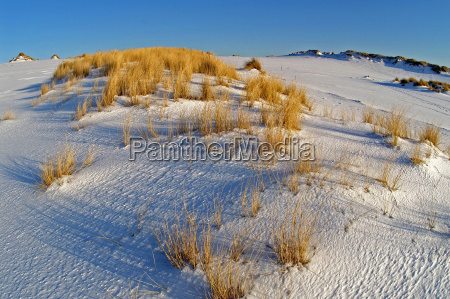 shifting sand dunes in winter on