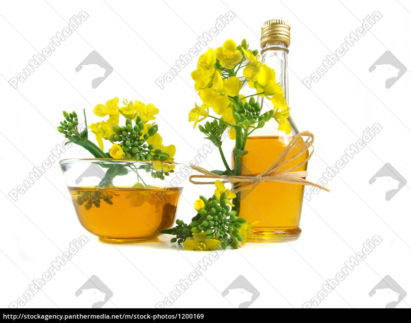 rapeseed, oil - 1200169