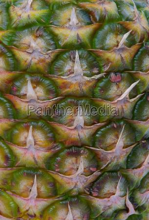 food aliment sweetly fruit diet pineapple