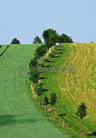steep path