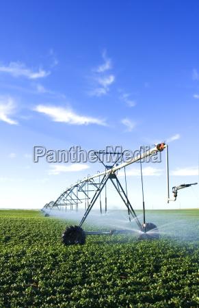 pivot spray