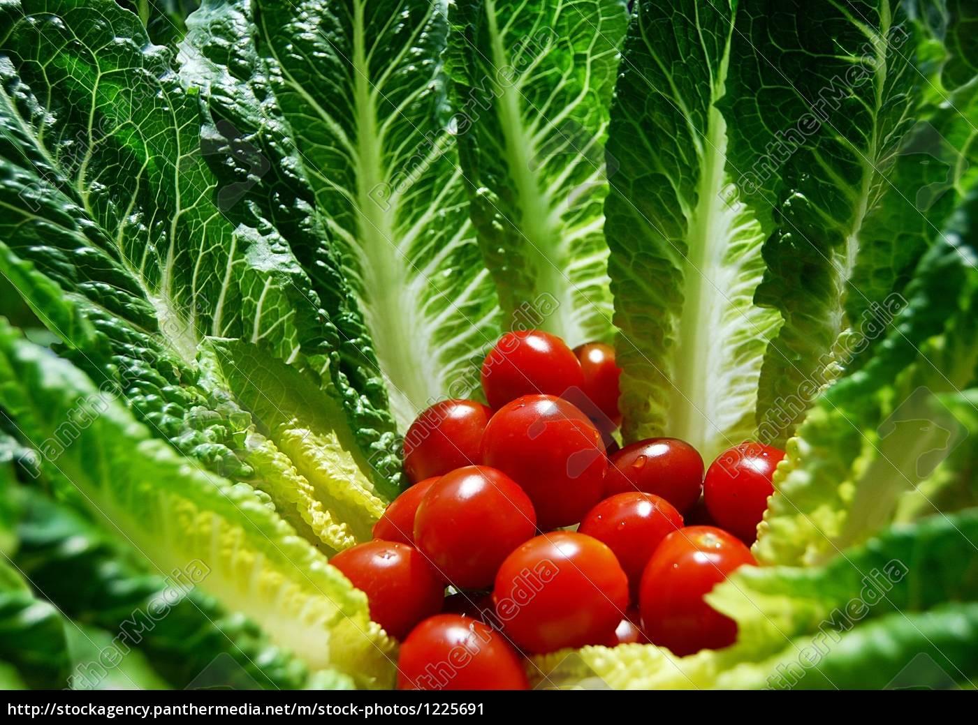 tomato, salad - 1225691