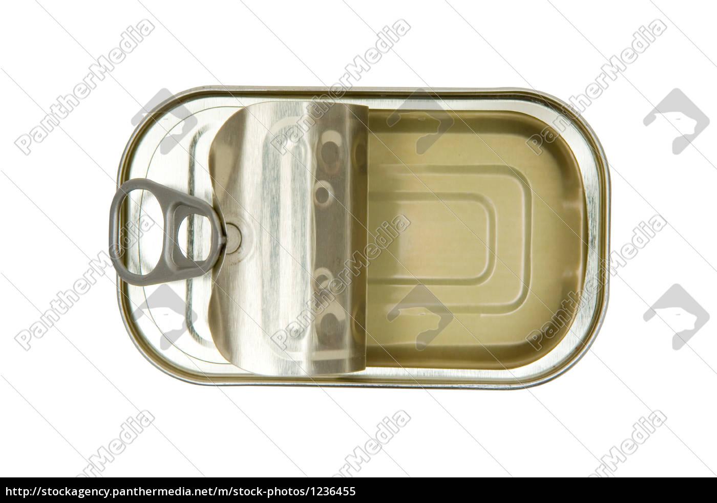 empty, sardine, canned - 1236455