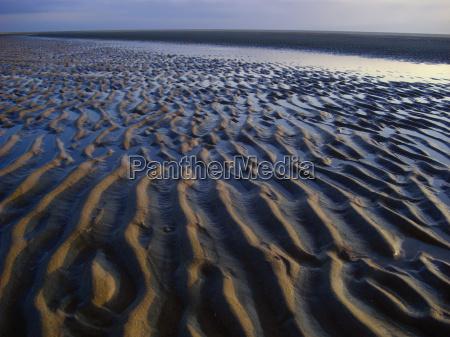 width in the wadden sea