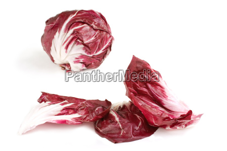 radicchio, leaves, and, head - 1267203