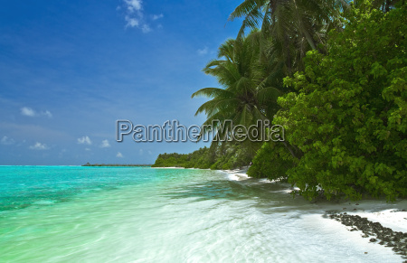 lonely, tropical, beach - 1288509