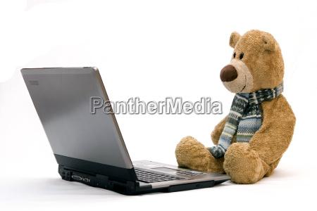 teddy, bear, and, laptop - 1294995