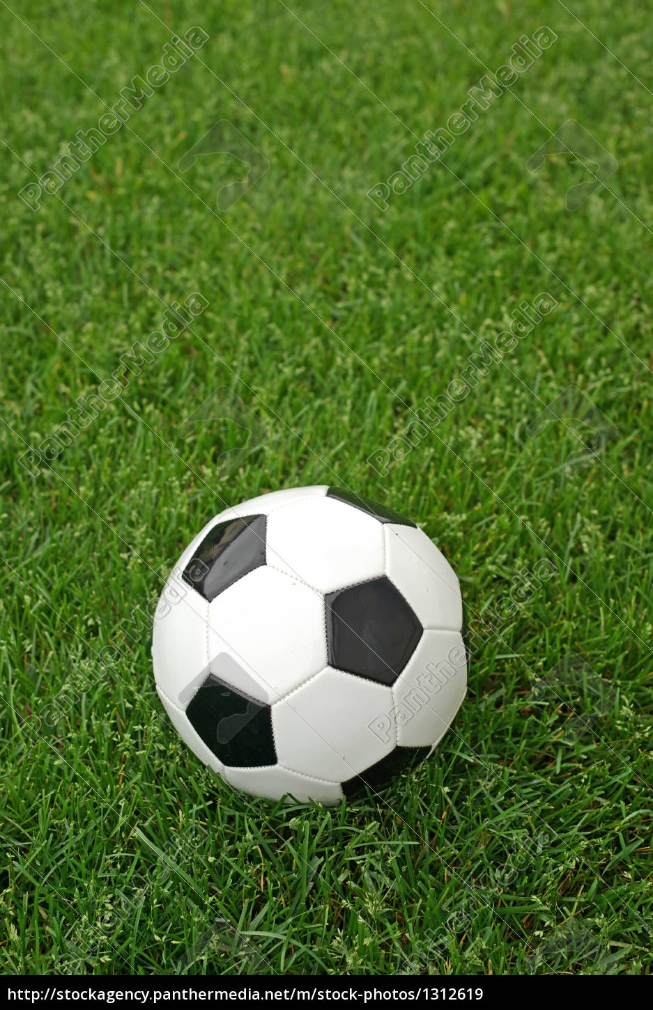 soccer, ball, in, the, grass - 1312619