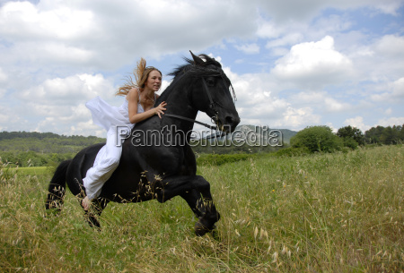 riding, wedding, woman - 1314973