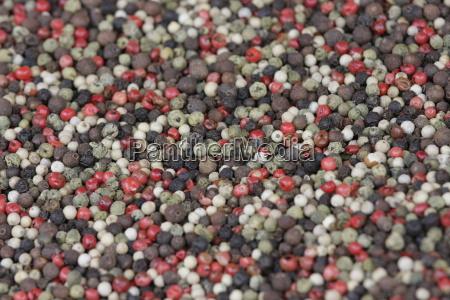colorful, pepper - 1318533