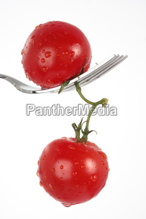a couple of tomatoes on a