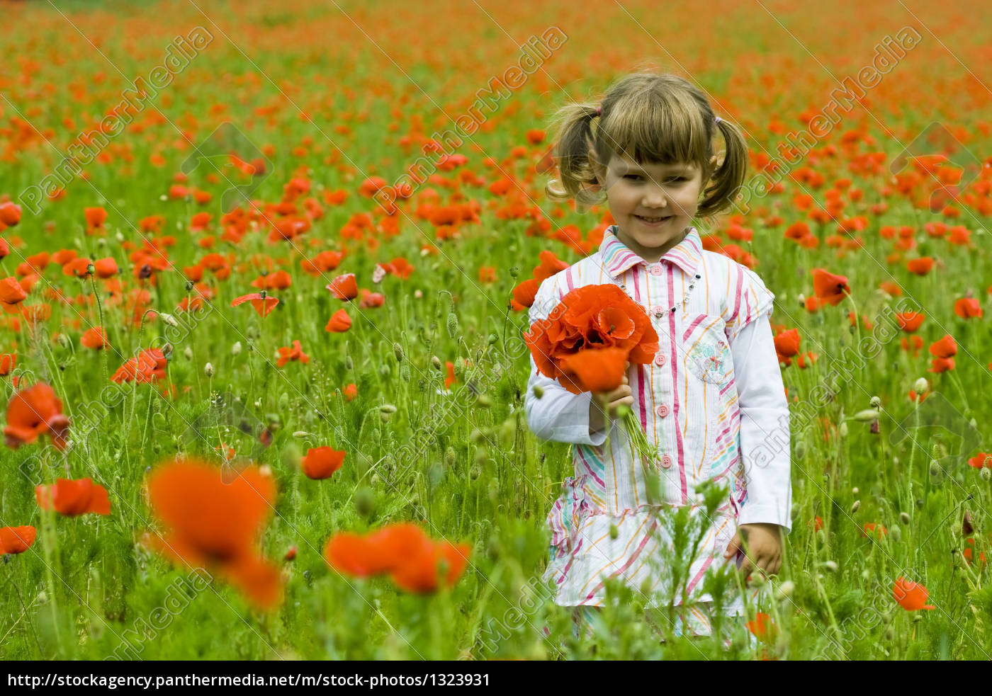 girl, on, meadow, with, a, red - 1323931