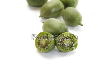 mini kiwi3