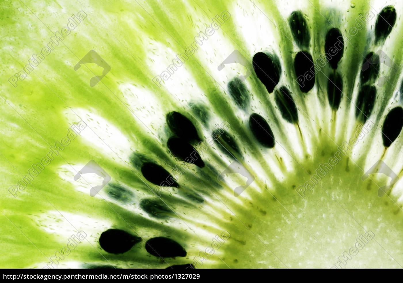 kiwi, fruit - 1327029
