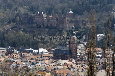 heidelberg castle in spring