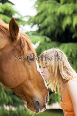 horse - 1332965