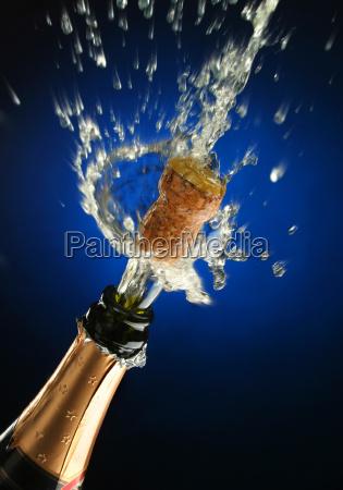 champagne, bottle, ready, for, celebration - 1338195