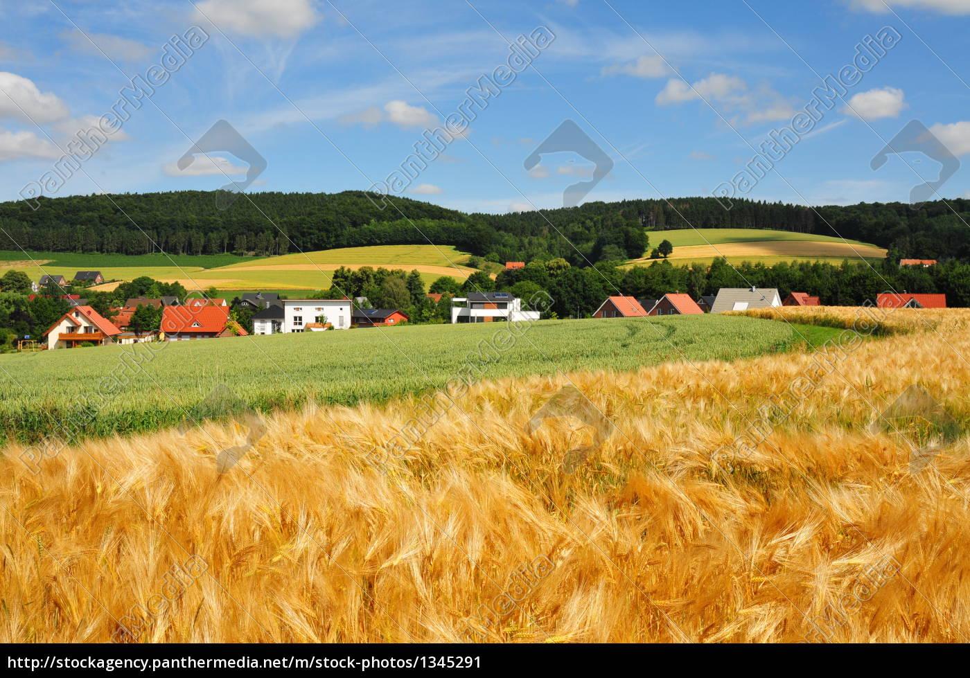 houses, in, tecklenburgerland - 1345291