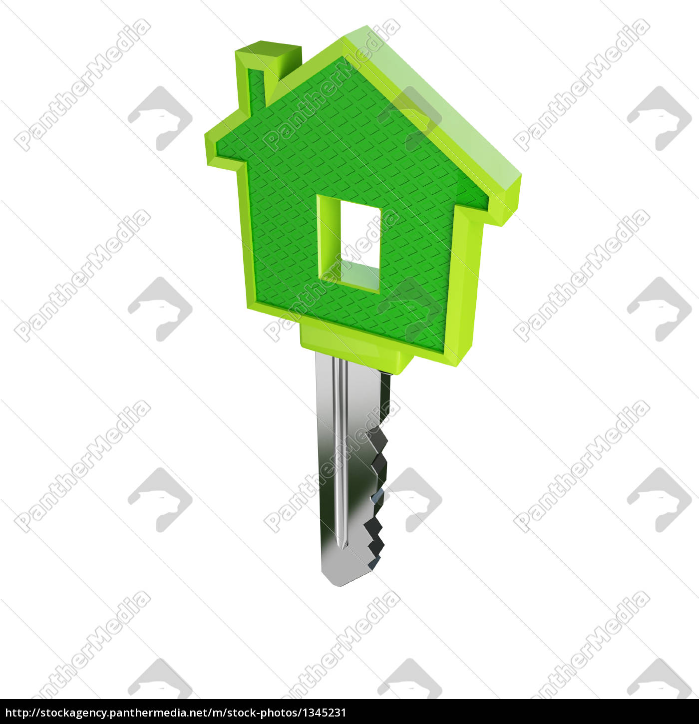 isolated, green, eco, house, key - 1345231