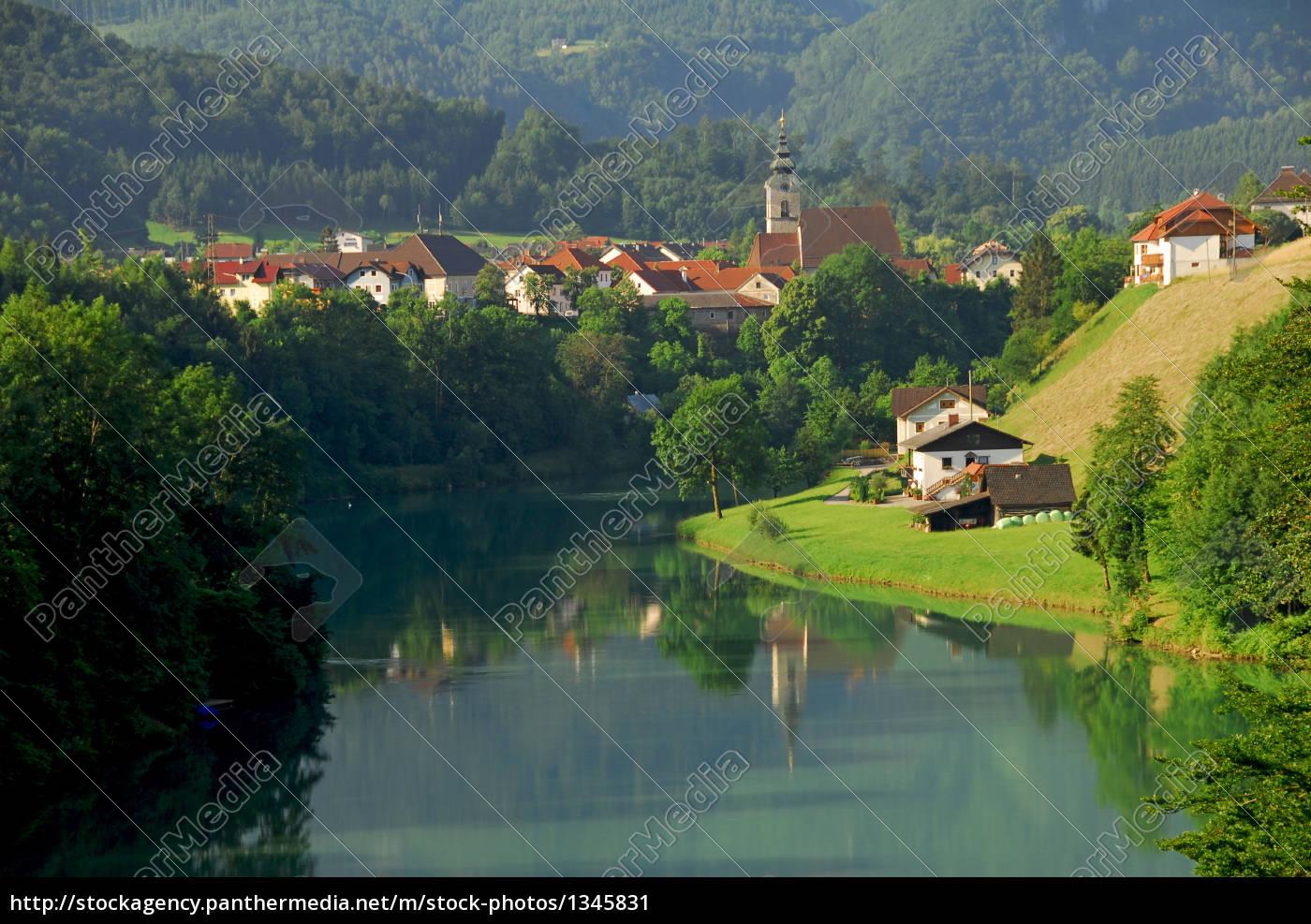 tern, mountain - 1345831