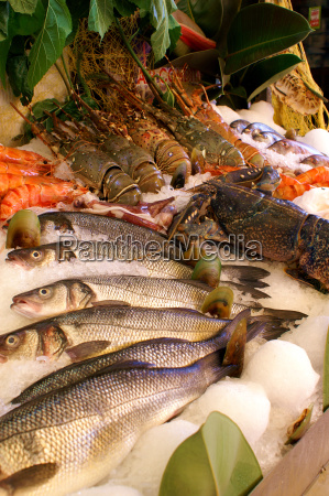 decorative, fish, delivery - 1346433