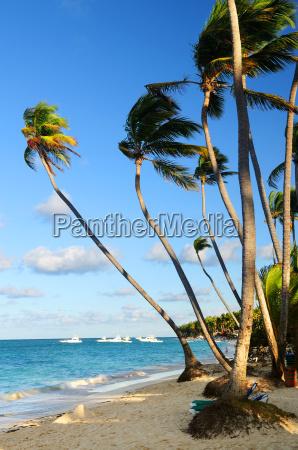 tropical, beach - 1346751