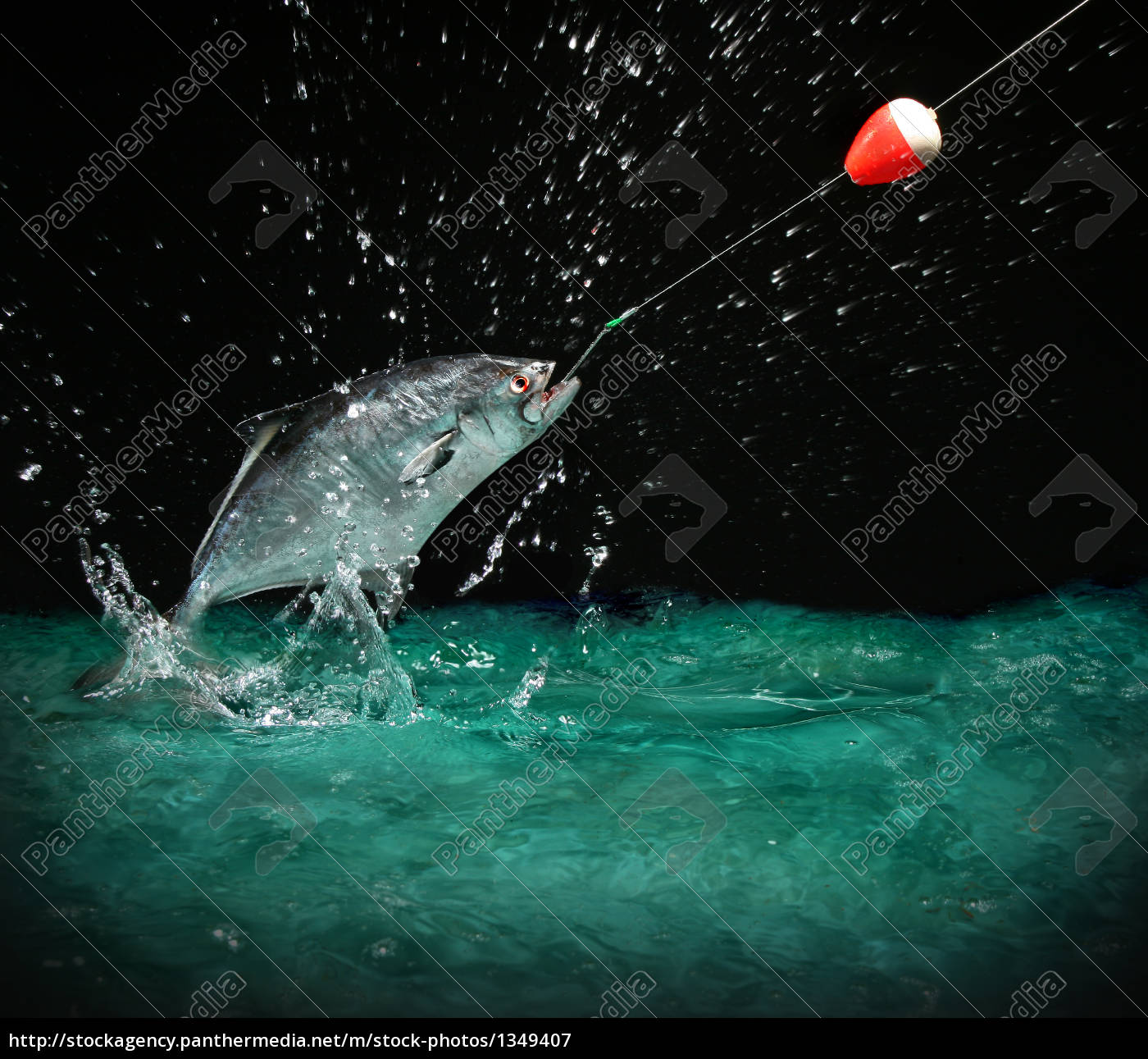 catching, a, big, fish, at, night - 1349407
