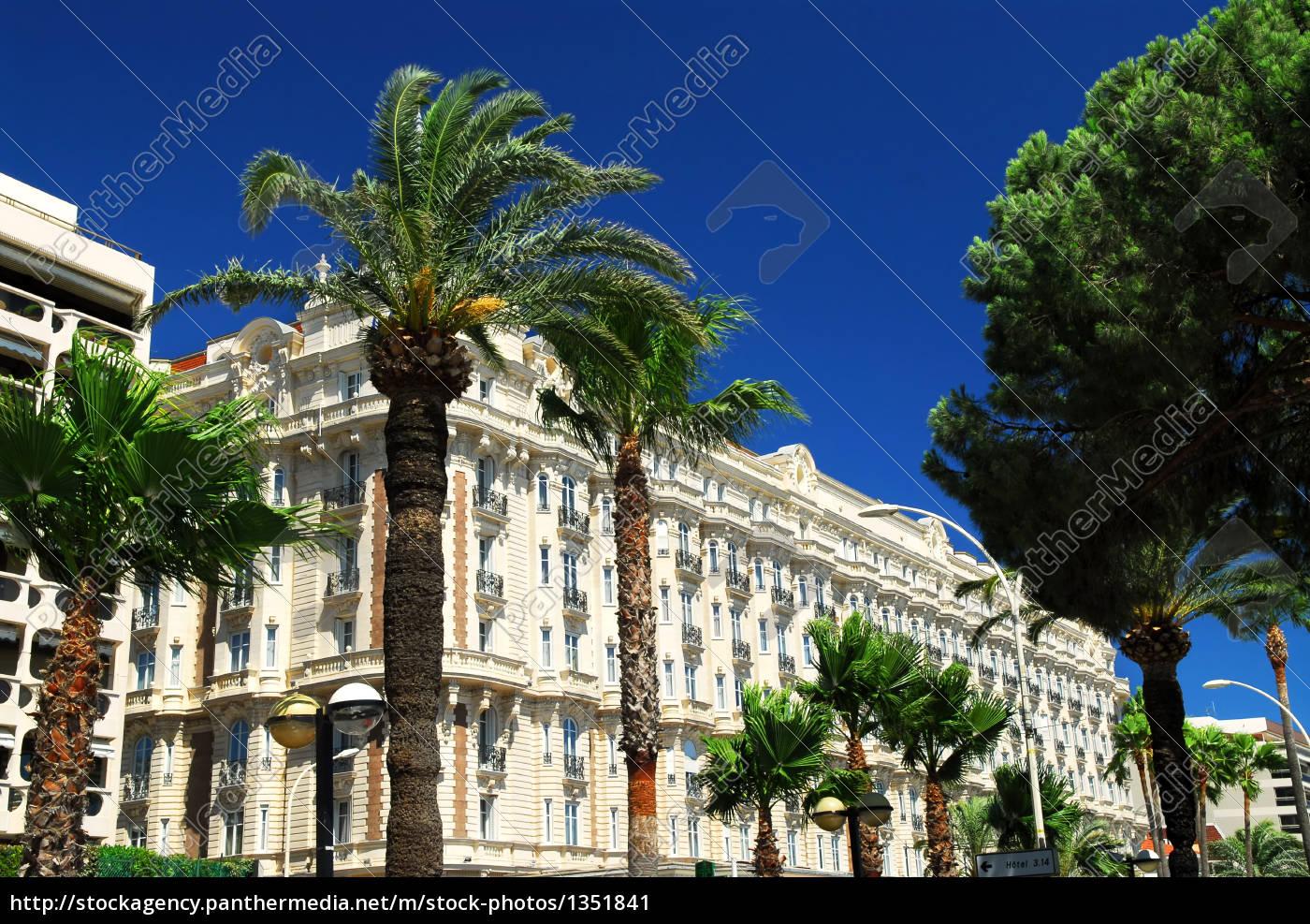 croisette, promenade, in, cannes - 1351841