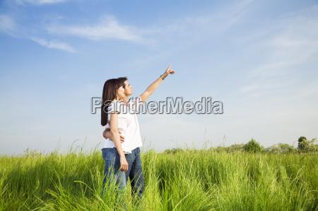 meadow - 1354175