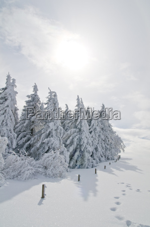 winter, landscape, 2 - 1356793