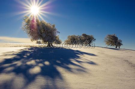 winter, sun, 5 - 1357435