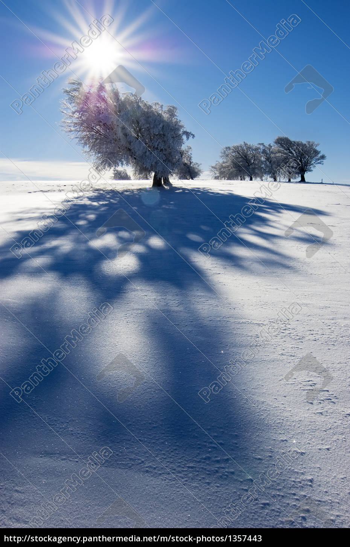 wintersonne, 6 - 1357443