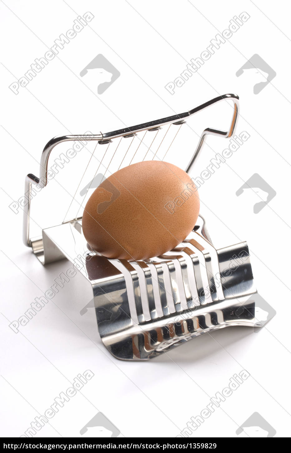 egg, cutter, with, egg, on, white - 1359829