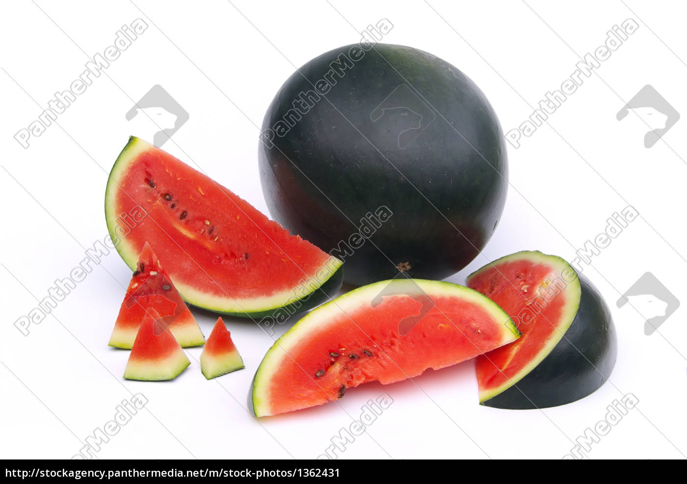 melon, 04 - 1362431