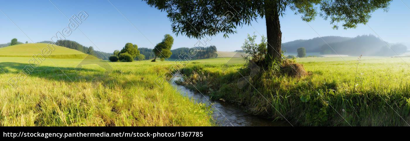 wald4tel, panorama - 1367785