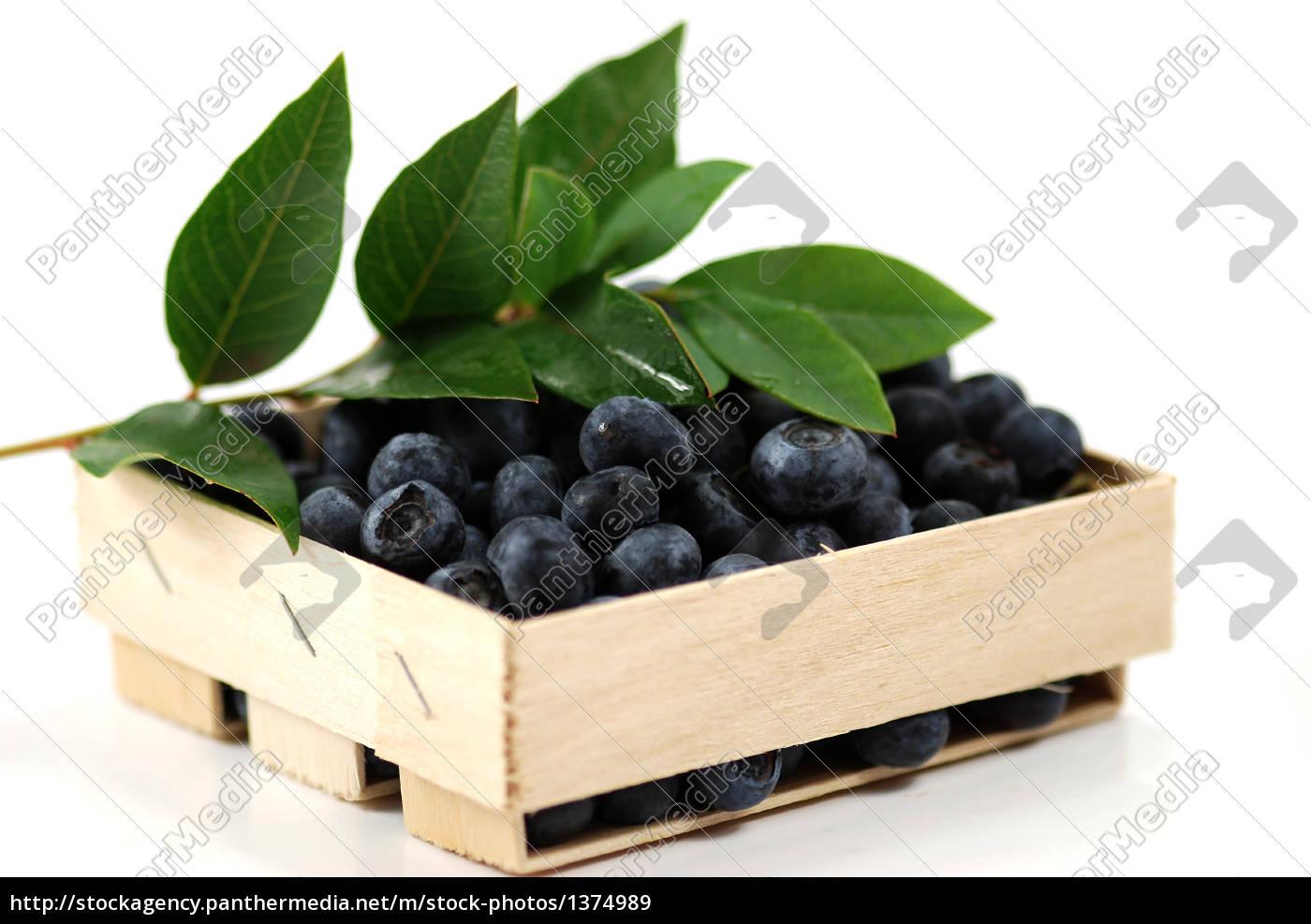 blueberries - 1374989