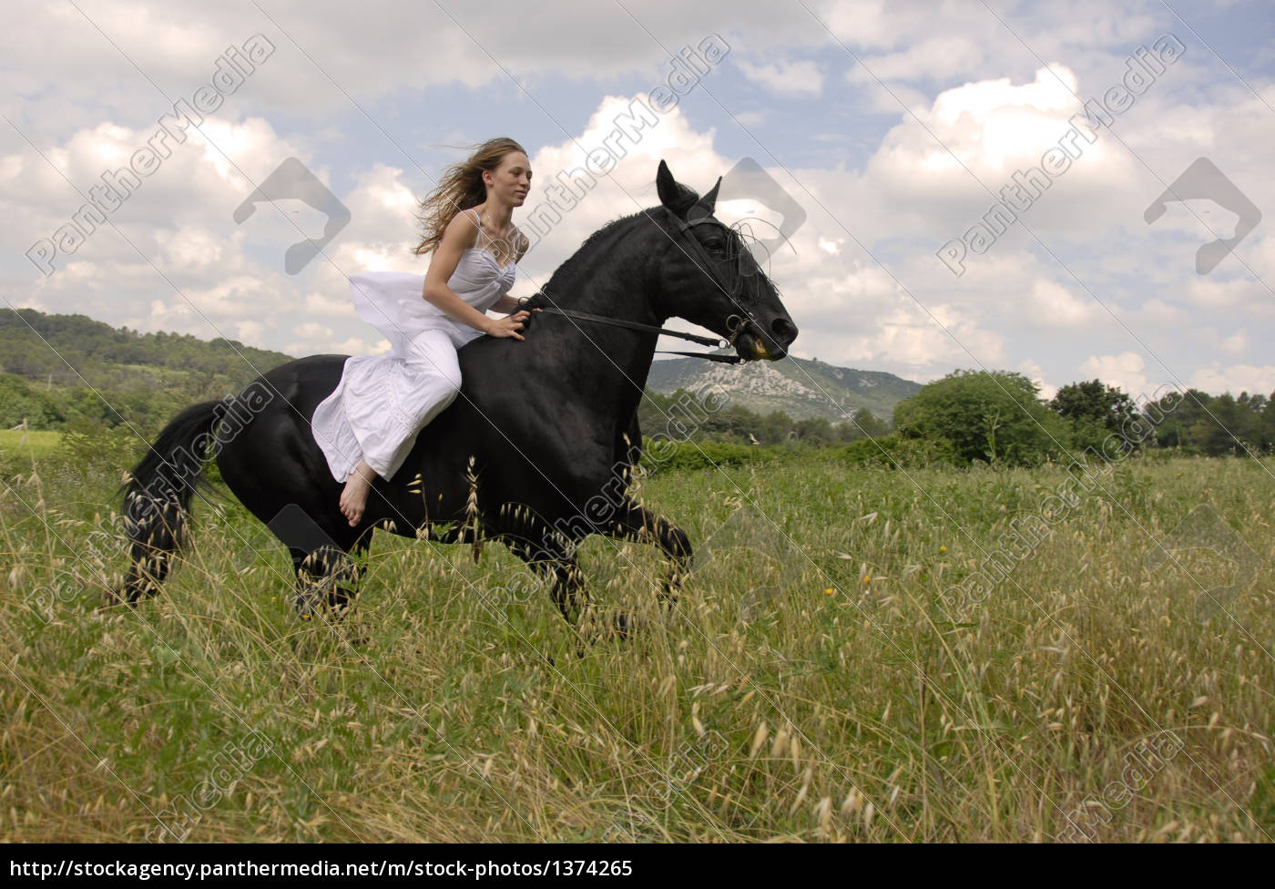 riding, wedding, woman - 1374265