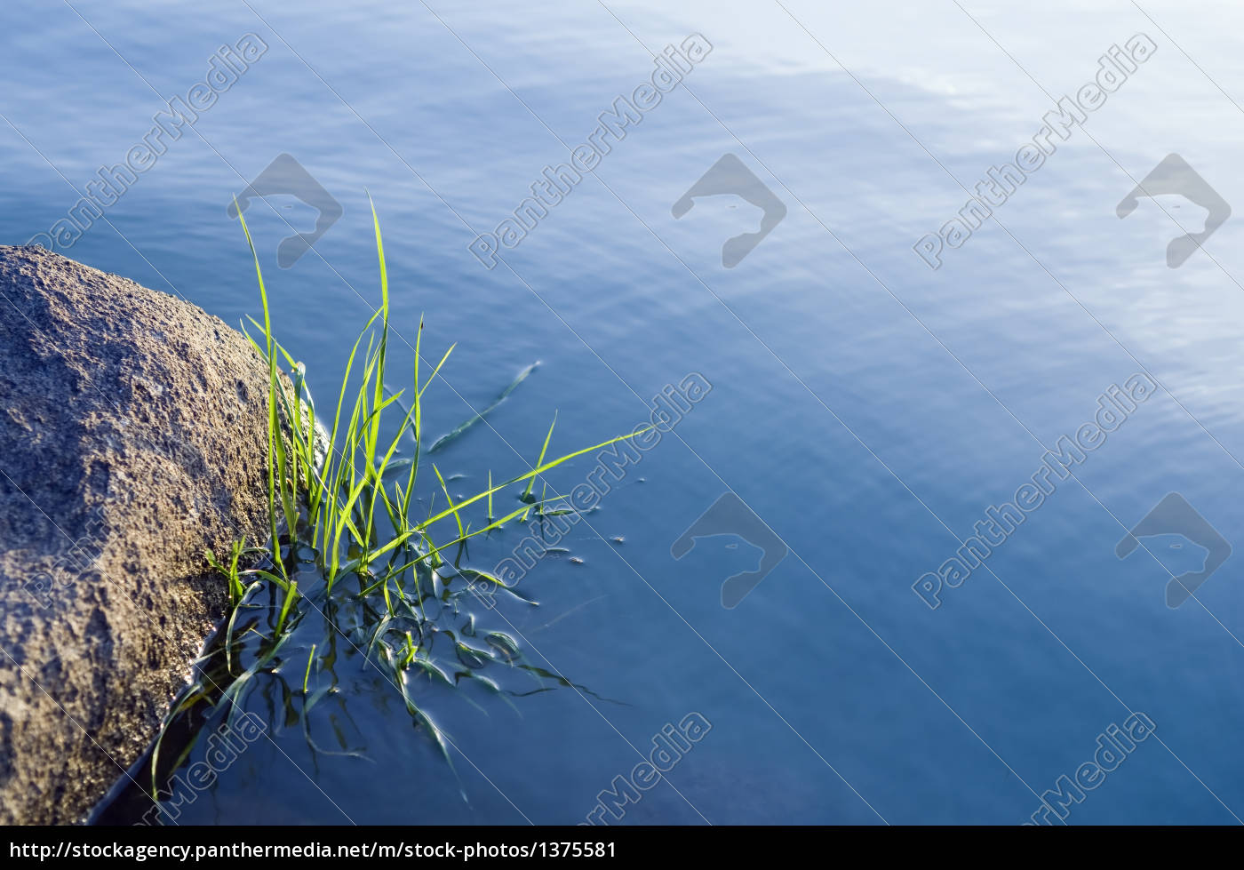 stones, and, grass, in, water, surface - 1375581