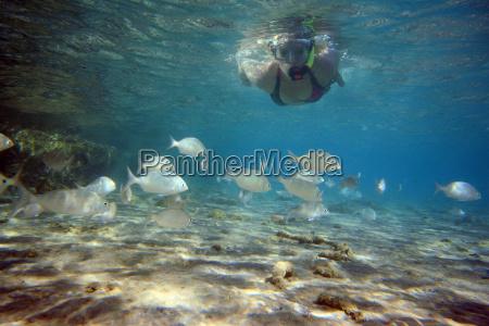 easy snorkeling 2