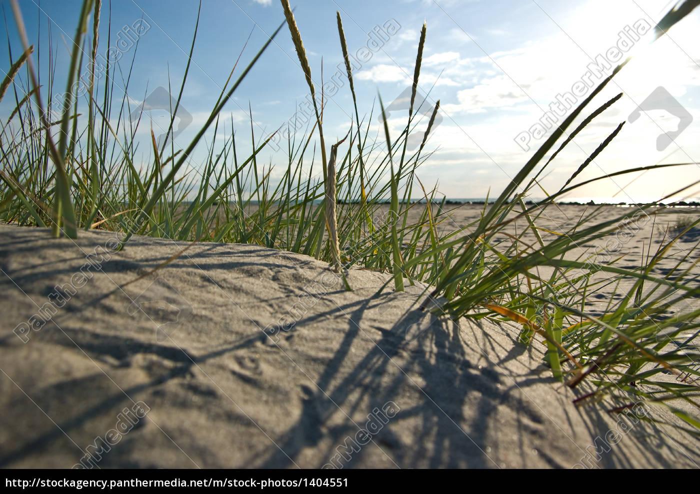 sunset, at, ahrenshooper, beach - 1404551