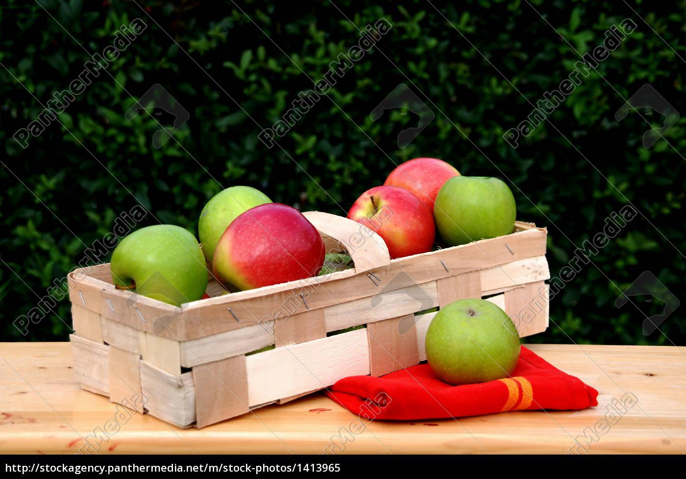 apple, harvest - 1413965