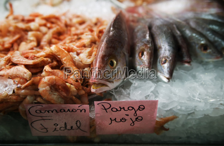 fish in ice at a market